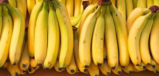 Így készül: a banán