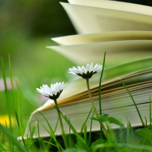 Könyvek, e-bookok