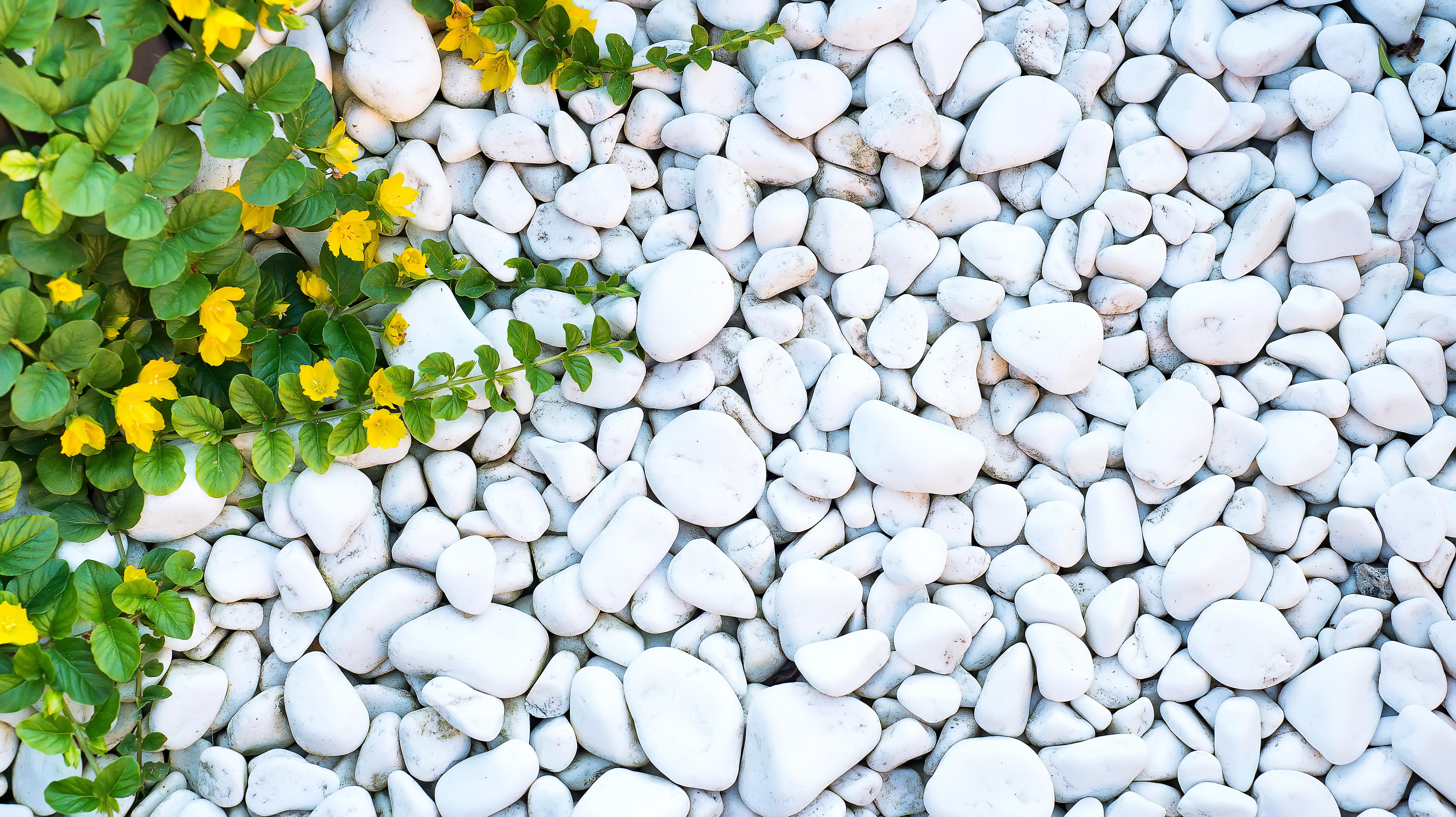 Murva a kertben, avagy a legszebb díszítő kőzet gyakorlati alkalmazása
