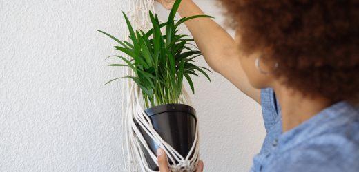 Így készíts saját növénytartót fonalból