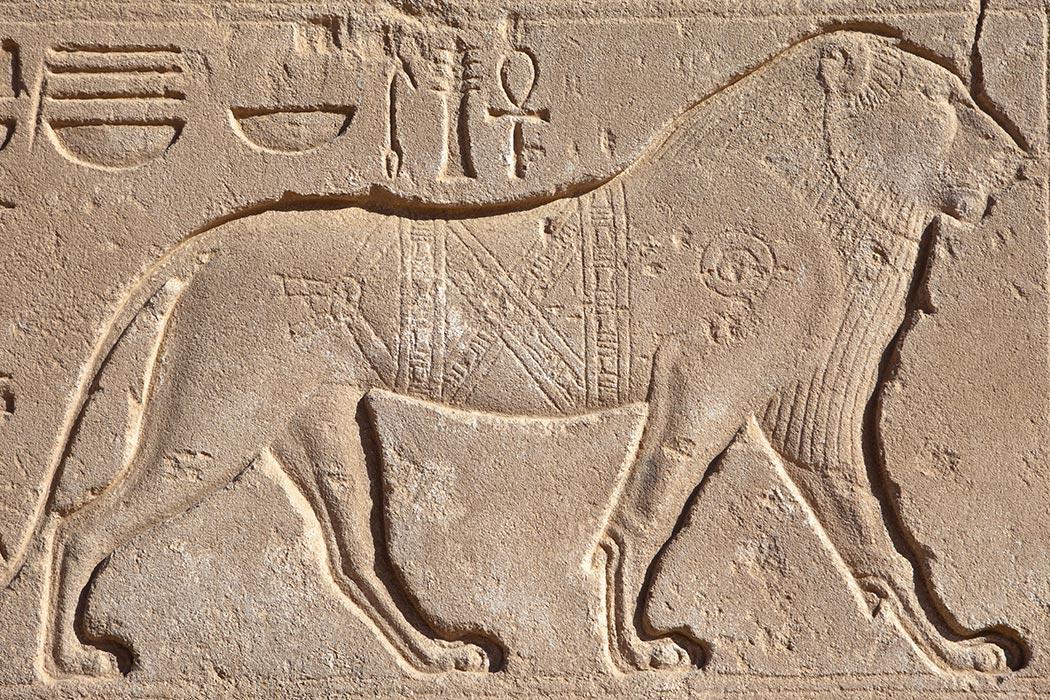 Állatkerti történelem