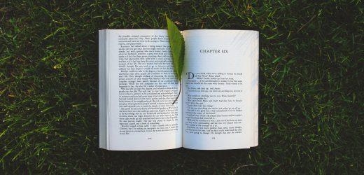 5 tuti nyárvégi könyv
