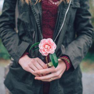 Kertészdobozok, élménydobozok