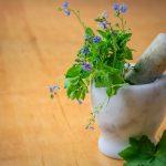 20. NATE Esték Gyógynövényekkel az egészséges kertekért