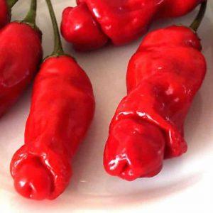 peter pepper piros