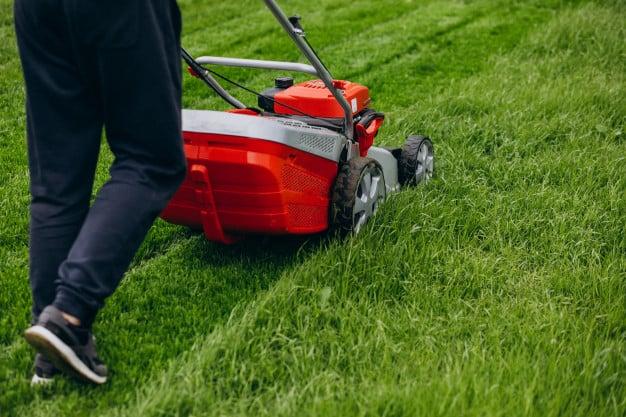 Kertészkedés tavasszal: ezekre a gépekre lesz szükséged