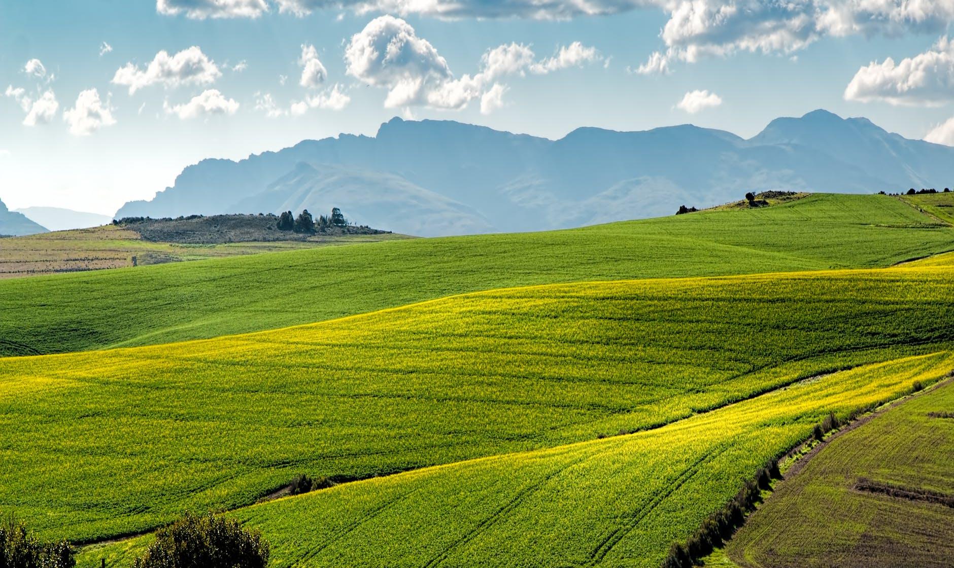 Felértékelődött a vidék a járványhelyzetben?